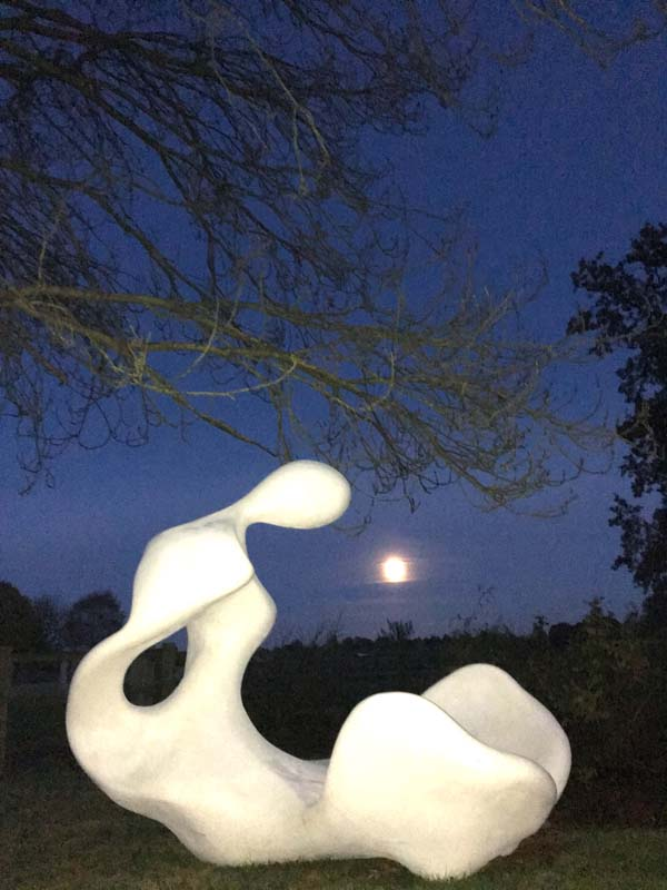 Birth - Sculpture in resin by moonlight