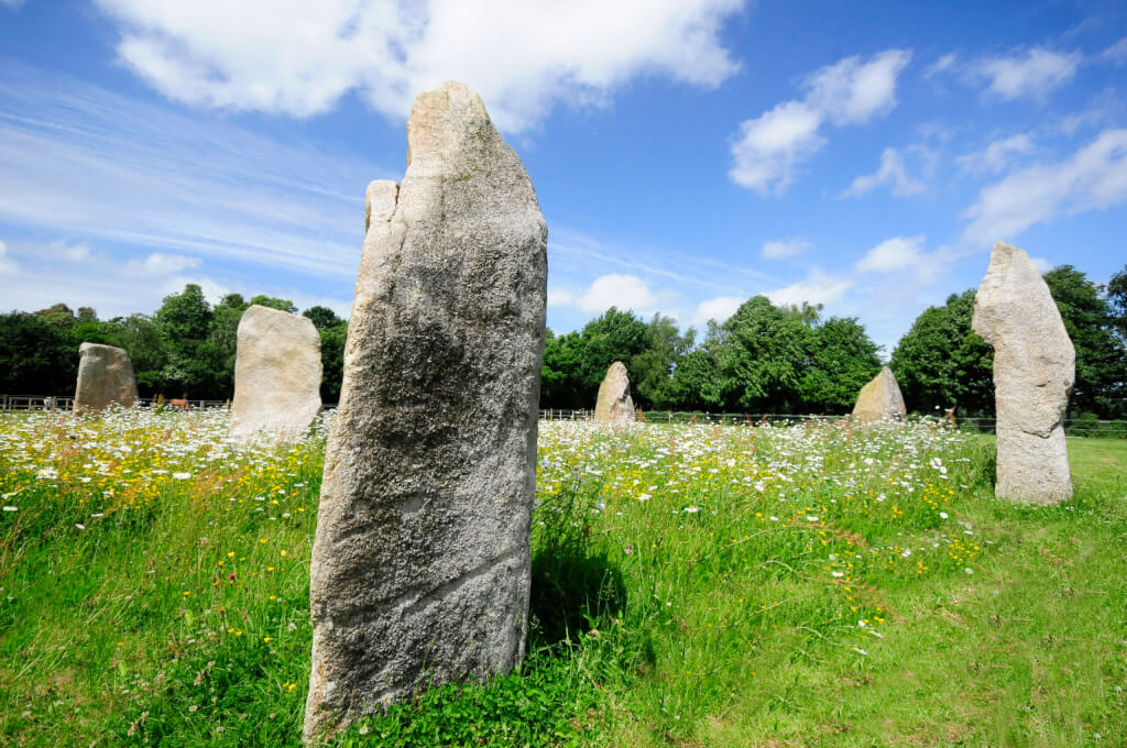 The Sussex Stone Circle. Six standing stones. Part of a circle. Cut grass outside circle. Wildflowers inside. Trees behind.